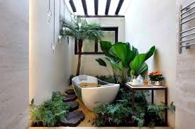 Best Plants For Bathroom Plants In The Bathroom U2013 The Best Suggestions For You Interior