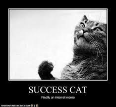 Success Cat Meme - i can has cheezburger success kid funny internet cats cat