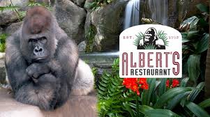 albert s restaurant san diego zoo