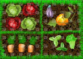 vegetable garden pictures free home decorating interior design