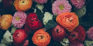 Types Meaning 10 Flower Meanings Symbolism Of Different Kinds Of Flowers