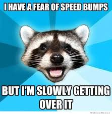 Fear Meme - i have a fear of speed bumps weknowmemes