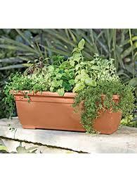 watering green state gardener