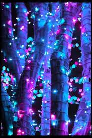 742 best lights images on