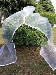 Vegetable Garden Netting Frame by Insect Garden Netting Supply Mosquito Netting Bug And Bird