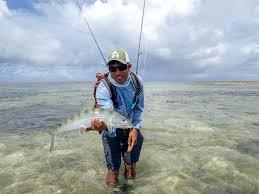 alphonse island seychelles triggerfish on fly aardvark mcleod