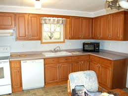 Price To Paint Kitchen Cabinets Average Cost Refacing Kitchen Cabinets Medium Size Of Kitchen To