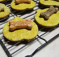 recipe for dog treats pumpkin peanut butter dog treats recipe treatthepups
