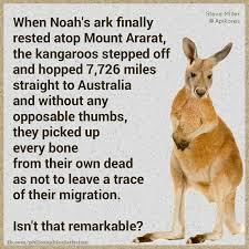 Kangaroo Meme - noah s ark the kangaroos philosophical atheism