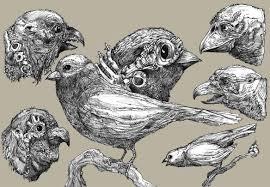 roland prinsler sketch sheet skizzenblatt bird character sketch