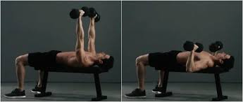 Dumbbell Exercises On Bench Full Body Dumbbell Workout To Build Muscle U0026 Get Strong Builtlean