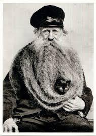 Cat Beard Meme - image 548272 cat beards know your meme