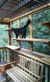 cat patio ideas home design planning excellent under cat patio