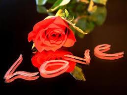 10 hochzeitstag rosenhochzeit sprüche zur rosenhochzeit kartentexte für den 10 hochzeitstag