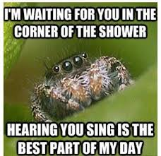 Sad Spider Meme - all of my nope spider humour and hilarious