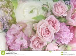 Amazing Flower Arrangements - amazing flower bouquet arrangement close up stock photo image