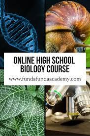 online high school health class 14 best fundafunda academy s online semester classes images