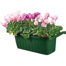 Rectangular Succulent Planter by Rectangular Planters You U0027ll Love Wayfair