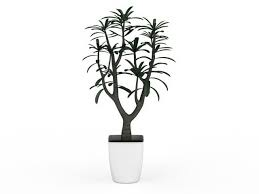small potted tree plant 3d model 3ds max files free