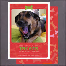 cutest pet cards from around the web