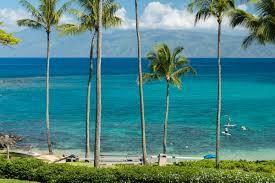 maui real estate blog upcountry kapalua wailea news blog