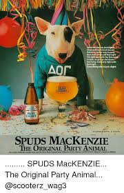 bud light party box spuds mackenzie bud ligh original pa knows there s no better way to