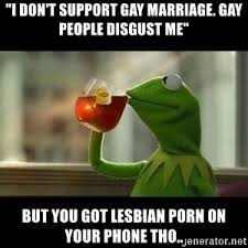 Lesbian Porn Meme - i don t support gay marriage gay people disgust me but you got