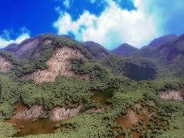 tutorial blender terrain creating a forest scene in blender why you crying gamedev net