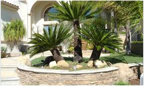 backyards fascinating landscaping ideas backyard desert pdf 106