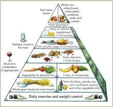 file harvard food pyramid png wikimedia commons