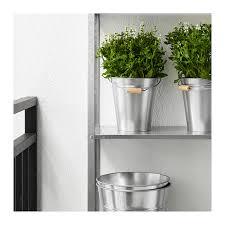 Galvanised Vases Socker Bucket Plant Pot In Outdoor Galvanised 2 5 L Ikea