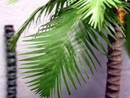 resultado de imagen para how to make leaves palm belenes