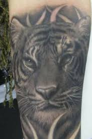 black and white tiger on arm tattoomagz