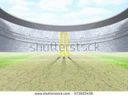 cricket pitch immagini stock immagini e grafica vettoriale