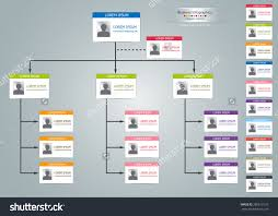color card organizational chart infographic multiple color color card organizational chart infographic multiple color business structure concept business flowchart work process vector illustration buy this