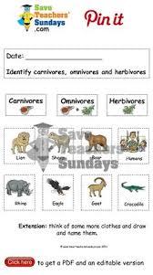 carnivores omnivores and herbivores animals to sort go to http