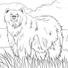 alaska coloring pages getcoloringpages com