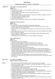 sle of resume plant electrician resume sles velvet
