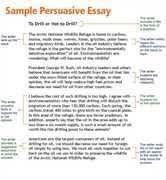 Recycling Persuasive Essay    Chris M