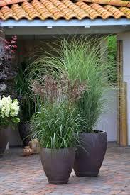 Gartengestaltung Mit Steinen Und Grsern Modern Die Besten 20 Terrassengestaltung Ideen Auf Pinterest