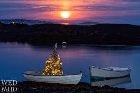 christmas tree shop riverhead simple christmas tree stands