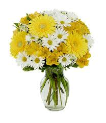 gerbera bouquet a day bouquet at from you flowers