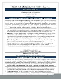 ceo resume template ceo resume template markpooleartist