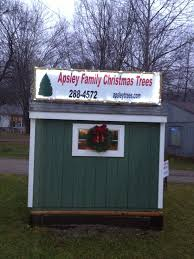 apsley family christmas trees your source for locally grown