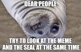Awkward Seal Meme - awkward moment sealion meme imgflip