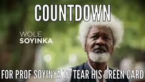 Green Card Meme - will wole soyinka tear his green card as vowed politics 1 nigeria