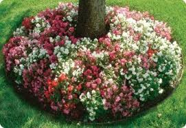Mailbox Flower Bed Garden Decorating Ideas 15 Small Flower Gardens Around Trees