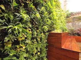 city garden design london landscape gardeners in essex