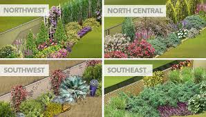 hide a chain link fence 4 regional garden plans