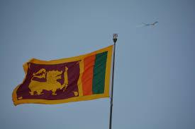 Sri Lanka Flag Lion Life And Beaches After The Tsunami Our Pangaea